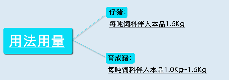润肠生3.png